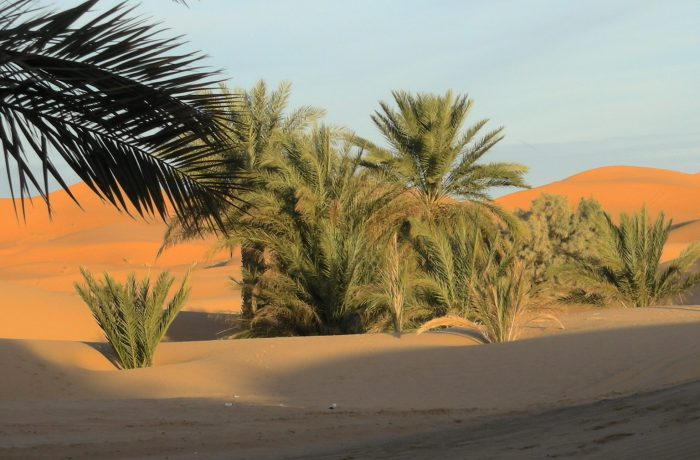 Marruecos 27